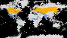 Karte zur Verbreitung der Gattung der Rohrdommeln