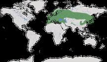 Verbreitung der Gattung Garrulus