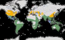 Karte zur Verbreitung der Gattung der Nycticorax