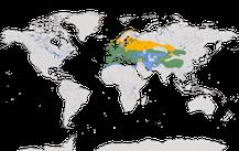 Verbreitung der Gattung Hänflinge