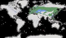 Verbreitung der Gattung Periparus