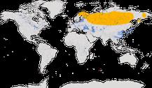 Karte zur Verbreitung der Zwergsäger