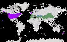 Karte zur Verbreitung der Gattung der Steinhühner (Alectoris)