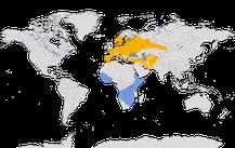 Karte zur Verbreitung der Gattung der Spötter.
