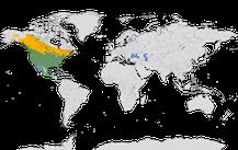 Karte zur Verbreitung der Gattung Agelaius.