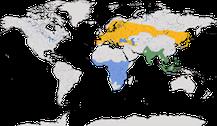 Verbreitung der Gattung der Wespenbussarde (Pernis)