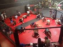アメリカ 修行 ジム ボクシング 格闘技 留学 カリフォルニア