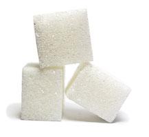 L'antigelo delle piante, lo zucchero