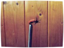Käfer-Imitat braun