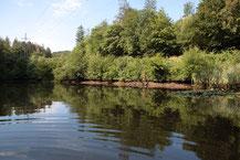 Unterer Teich im Mühlbachtal bei Hettenhain - Foto: Uwe Müller