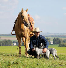 Jens mit Hengst Chex u. Hunden Lucky & Joy