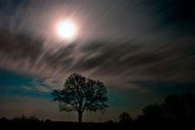Mond, Foto: Bernd Kasper / pixelio.de