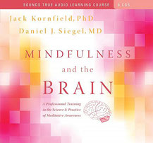 CD: Mindfulness and the Brain (6 CDs)