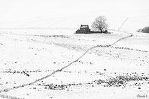Aubrac,hiver,
