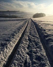Die Spur ist klar, aber der Weg nicht einfach!