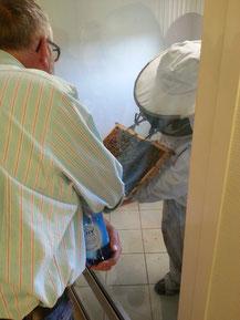 Ouverture d'une ruche en sécurité à la Maison du Miel et des Abeilles du Val Dunois