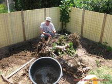 Riesenwurzel ausgraben Fundament Holzhaus
