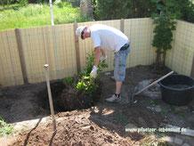 Wurzeln entfernen Fundament Stelzenhaus