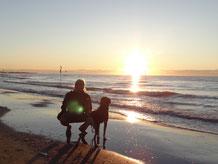 Der perfekte Badeurlaub mit Hund - Traveldog - fair4world