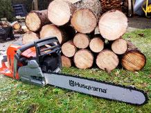 Kletterausrüstung Baum Fällen : Baumstumpffräsen & gartenpflege baumstumpfnager