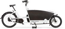 Urban Arrow Family - Lasten e-Bike 2020