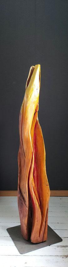 vuurvogelliefde, kerselaar, 130 cm hoog (1)
