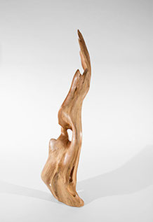 S0198 · Willow#sculpture#bowl#coffeetable#woodworking#interiordesign#woodsculptures#art#woodart#wooddesign#decorativewood#originalartwork#modernwoodsculpture#joergpietschmann#oldwood