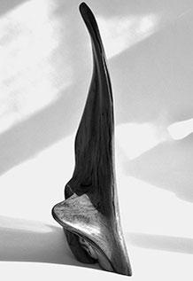 S0247 · Fir#sculpture#bowl#coffeetable#woodworking#interiordesign#woodsculptures#art#woodart#wooddesign#decorativewood#originalartwork#modernwoodsculpture#joergpietschmann#oldwood