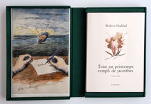 Tout un printemps rempli de jacinthes Hubert haddad Olivier O. Olivier Dumerchez Bernard Editions