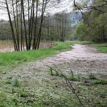 Hochwasser Mai 2017