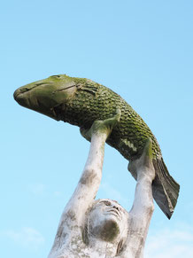 Luftfische auf Hiddensee