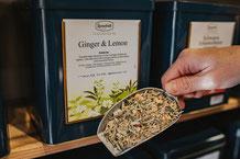 Kräuter Tee - Ingwer mit Kräutern