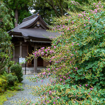 妙法山阿弥陀寺の萩