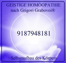 Selbstaufbau der Körpers, 9187948181, Sphäre, GEISTIGE HOMÖOPATHIE nach Grigori Grabovoi®