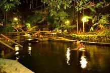 Arenal Combo Tour:  Canopy +Ecotermales La Fortuna