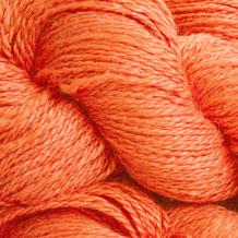 102 - Sunrise Carrot