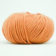 310 - Forgotten Orange