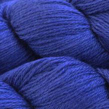 1007 - Blue Whale