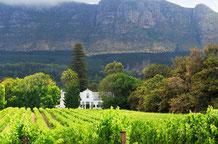 Ausflüge Kapstdt Reisetipps: Stellenbosch