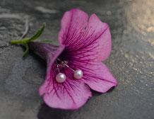 zahrte Perlenohrringe