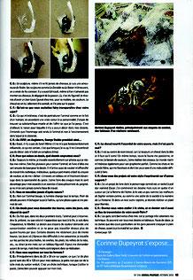 2/2 Cheval Pratique - Octobre 2016