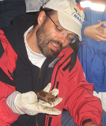 Forschungsnacht Fledermaus, Foto: NABU Wiesloch