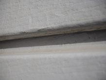Bardage particules de bois agglomérées compressées Werzalit Heritage