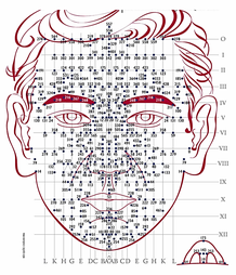 Dien Chan points de réflexologie faciale La Rochelle