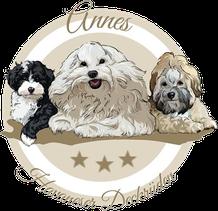 Zu sehen ist ein Havaneser Logo mit 3 Havanesern drauf