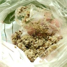 Möhren Saatgut mit Sand vermischt