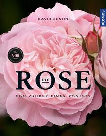 Austin, David: Die Rose - Vom Zauber einer Königin