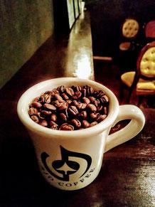 鎌倉 由比ヶ浜 SJOCOFFEE コーヒー豆