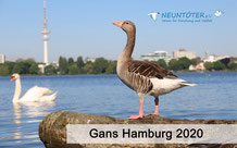 "Fotokalender ""Gans Hamburg"""