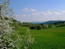 Panoramablick vom Landhaus Wildfeuer